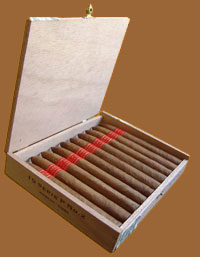 Serie P No. 2 Box Of 10